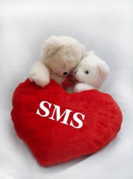 Романтические смс прощений у любимой, нежные смс извинения