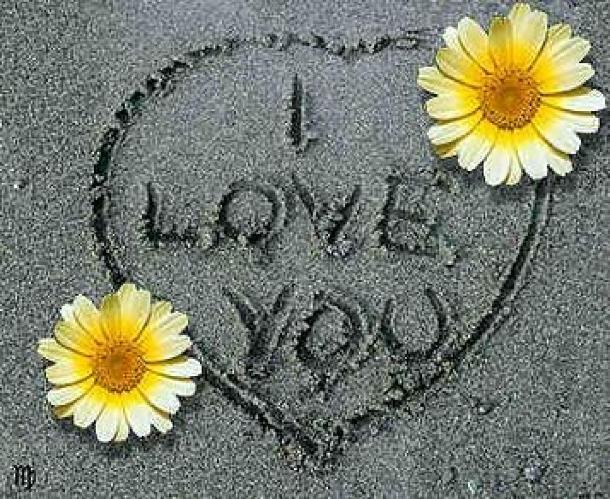 Прикольные статусы про любовь всегда новые, смешные и веселые статусы про любовь
