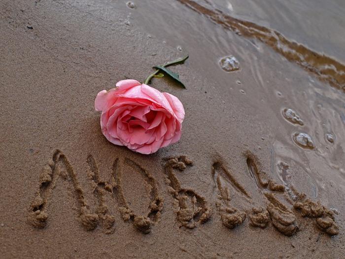 Статусы про любовь любимому мужу. Лучшие статусы про счастливую и взаимную любовь к мужчине.